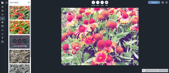 BeFunky_Photo_Editor